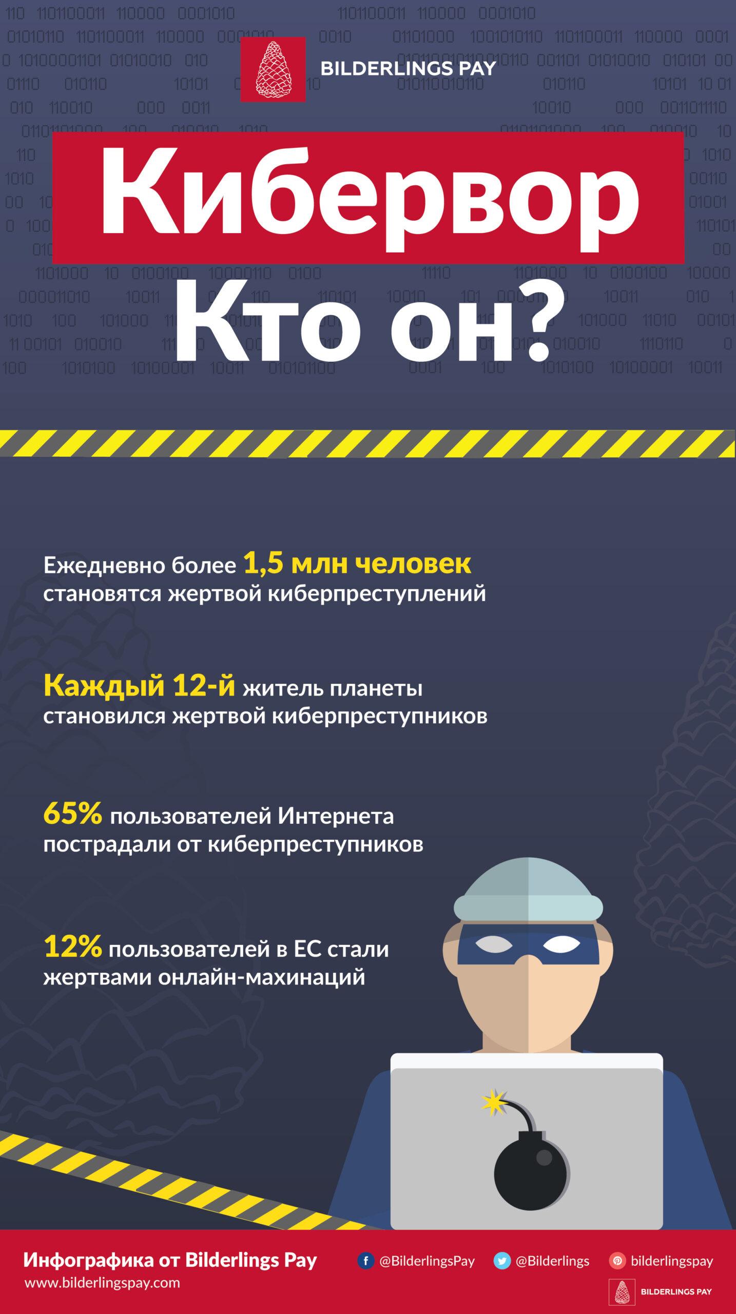 Инфографика Bilderlings Pay: кибервор – кто он?